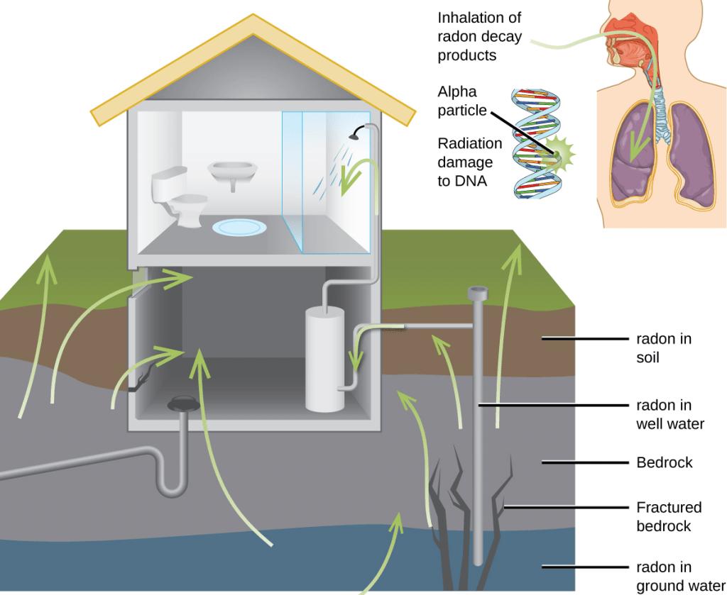 Entrada de radão nas habitações por fendas ou através da água.